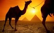 Nepokoje v Egyptě ohrožují trhy